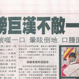 紅火蟻剪報(蘋果日報)(修改13-4-2012)