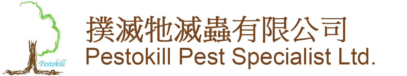 撲滅牠滅蟲有限公司 – PESTOKILL PEST SPECIALIST LTD.